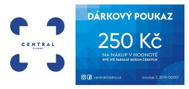 Dárkový poukaz 250Kč